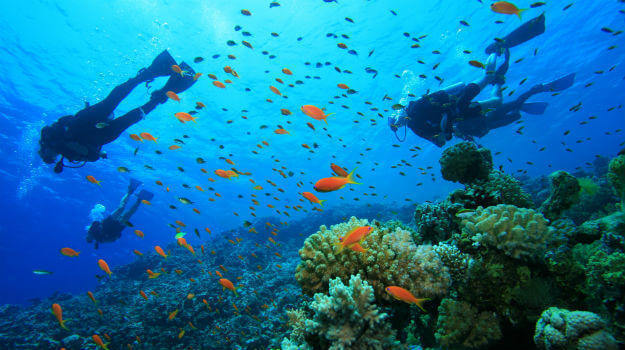 Scuba Diving Goa - RentMyBike